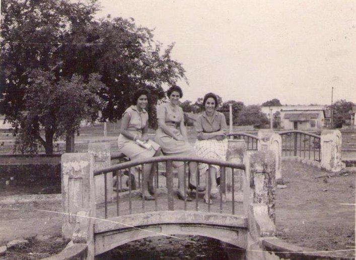 Anos Dourados — Belas porto-velhenses, filhas de categas