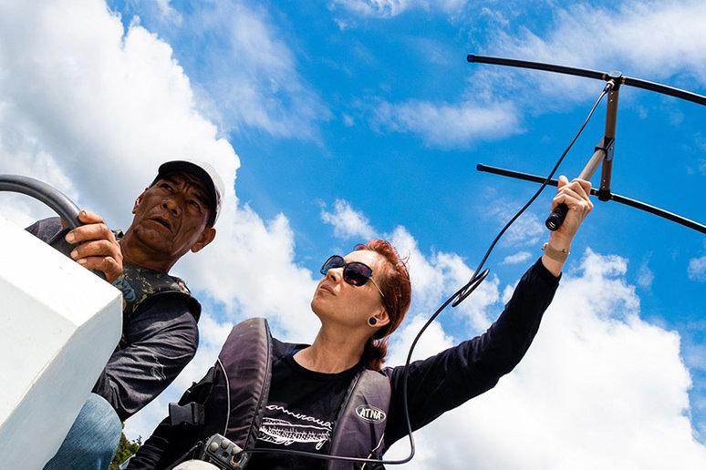 Pesquisadores iniciam campanha de captura científica de onças-pintadas em reserva na Amazônia - Bernardo Oliveira