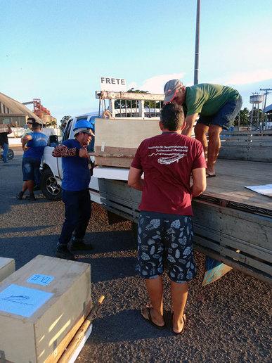 Na chegada ao porto de Santarém, o transporte seguiu com uma caminhonete - crédito Anne Rapp Py-Daniel