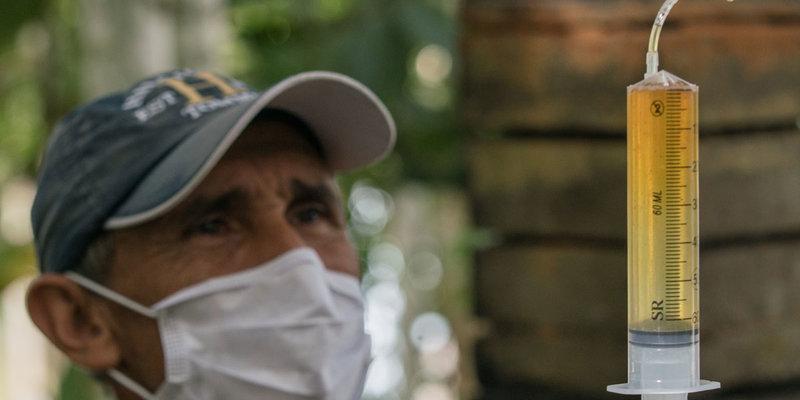 Técnicas de extração de mel são ensinadas em cursos de meliponicultura (Foto: Leonardo Lopes)