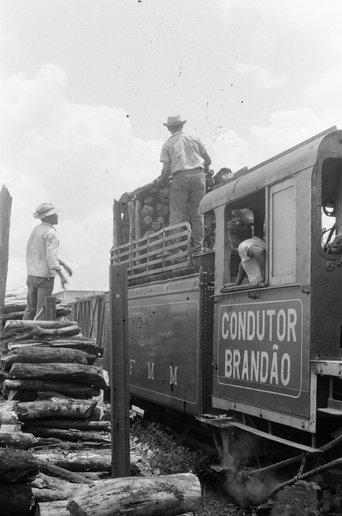 Locomotiva Brandão, também alemã. É a 20, que está em Guajará Mirim. O SPU trocou sua identificação para uma minissérie