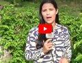 SIC RURAL: Você sabe o que é agricultura sintropica?