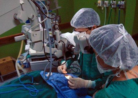 Primeiro transplante do Brasil comemora 50 anos
