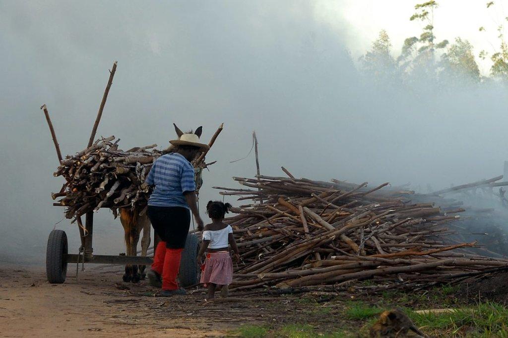 Campanha marca o Dia Mundial de Combate ao Trabalho Infantil - Gente de Opinião