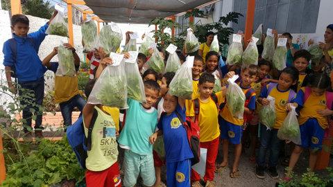 Alunos da Rio Madeira colhem produtos da horta orgânica plantada por eles