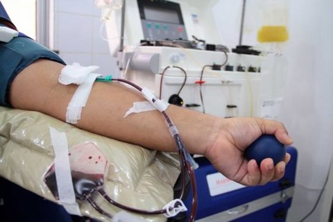 Doação de sangue deve ser feita antes da imunização contra o sarampo, alerta Fhemeron