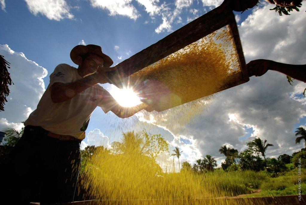 Dia do agricultor é comemorado com evento nacional - Gente de Opinião