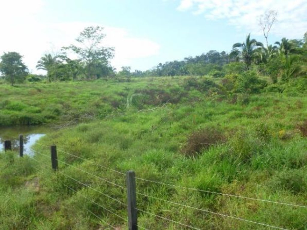 Pesquisa mineral do Projeto Aripuanã inicia nova fase - Gente de Opinião