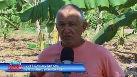 Chacareiros reclamam de resíduo solido em propriedade particular (VÍDEO)