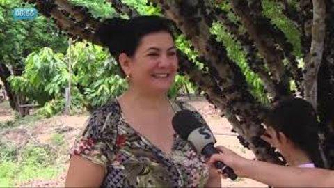 Jaboticaba virou atração turística em Ariquemes - RO (VÍDEO)