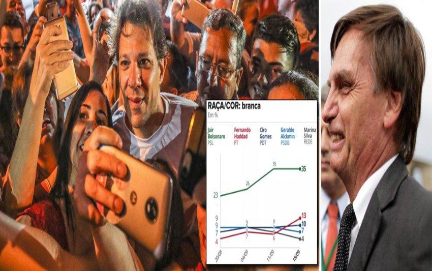 Haddad dispara em todos os segmentos; Bolsonaro entre brancos e mais ricos
