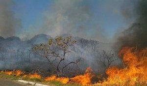 Multas contra queimadas podem chegar a R$ 7 milhões   - Gente de Opinião