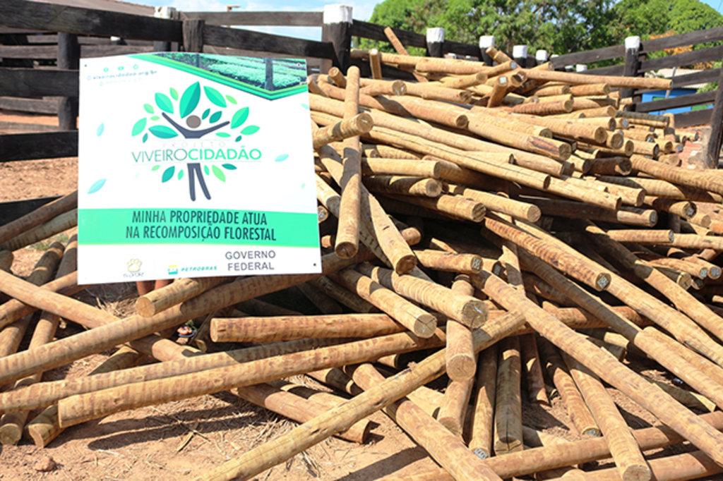 Recuperação de áreas: Materiais de isolamento começam a ser entregues pela Ecoporé   - Gente de Opinião