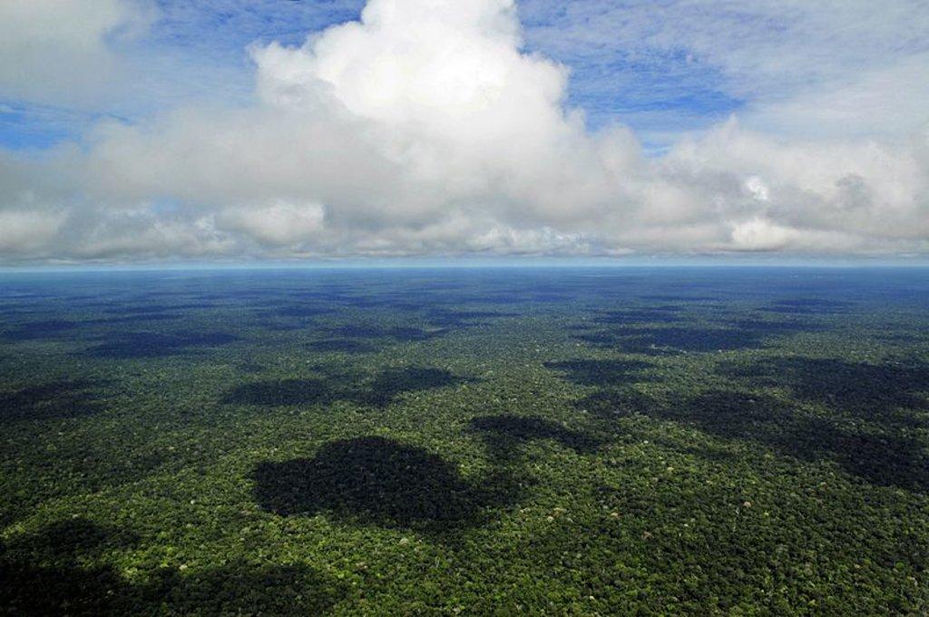 Chove menos no Sul da Amazônia   - Gente de Opinião