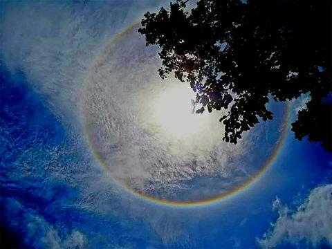 SOL DA AMAZÔNIA - Por Angella Schilling