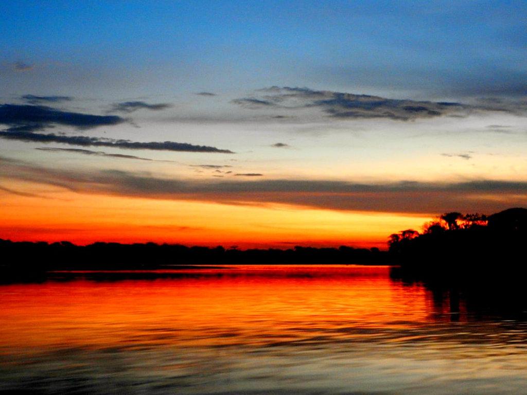 SOL DA AMAZÔNIA - Por Angella Schilling  - Gente de Opinião