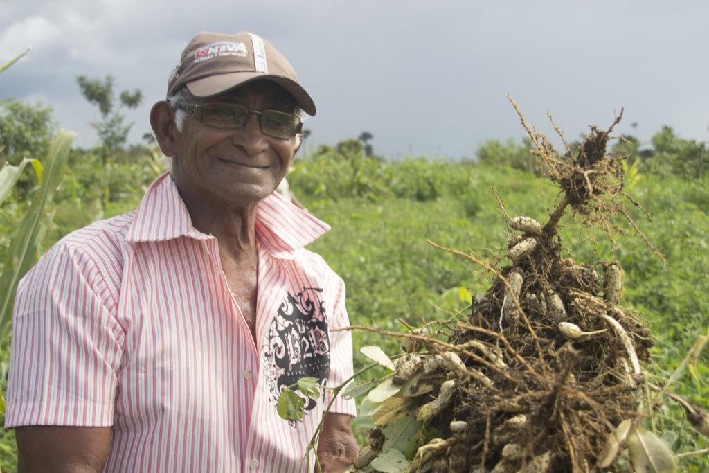 É possível recuperar áreas degradadas e gerar ganhos econômicos - Gente de Opinião