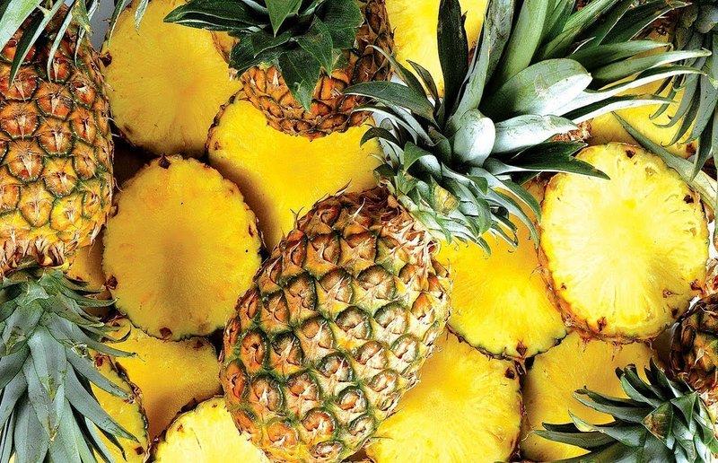 Abacaxi pode ser produzido o ano inteiro em Rondônia