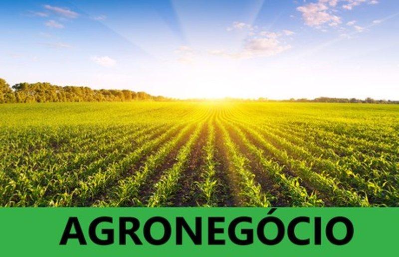Fusões preocupam o  agronegócio em RO