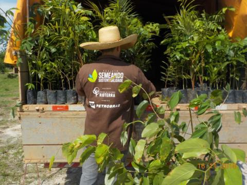 Projeto Semeando Sustentabilidade 4 já distribuiu mais de 180 mil mudas para recuperação de áreas