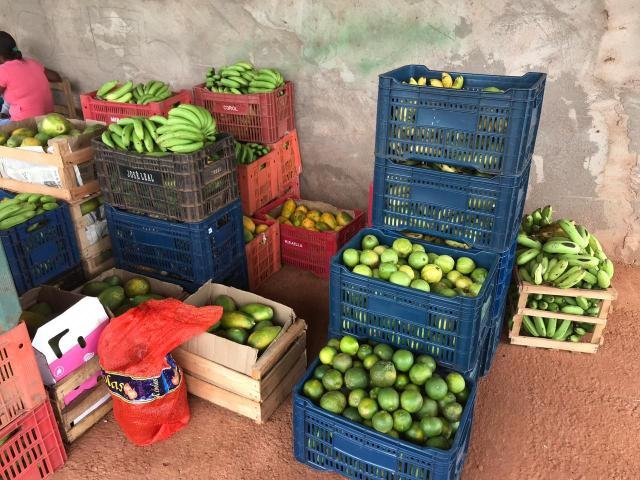 Hospital Municipal de Rolim de Moura recebe alimentos da Agricultura familiar - Gente de Opinião