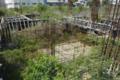 Senador Acir sugere CPI sobre obras paradas do hospital de Ariquemes