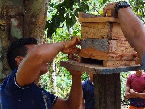 Amazônia: Comunitários participam de oficina de criação de abelhas nativas
