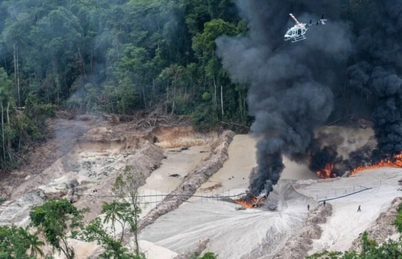 Jair Bolsonaro desautoriza operação em andamento do Ibama contra madeira ilegal em RO