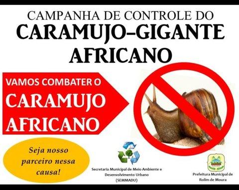 Secretaria de Meio Ambiente realiza campanha para eliminar caramujo africano em Rolim de Moura