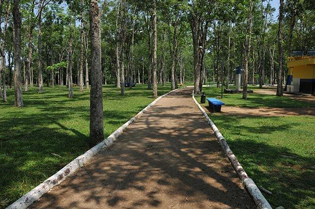 Parque Circuito terá Memorial dos Seringueiros - Gente de Opinião