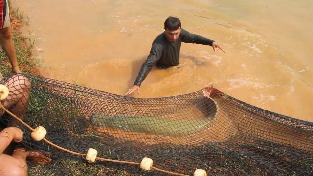 Setor regulamentado: pesca em rios pode ser feita mediante carteira de identificação - Gente de Opinião