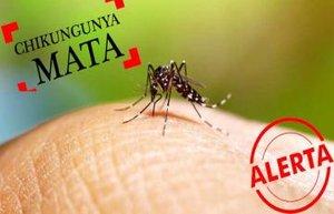 Jovem rolimourense morreu vítima de Chikungunya - Gente de Opinião