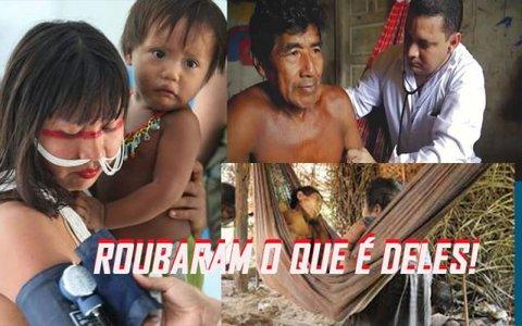 Corram para tirar Bolsonaro do poder - Os pescadores contra os...pescadores! - Quatro tentativas infantis - Um nome para candeias