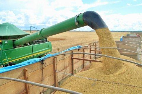 Chineses querem a soja de Rondônia