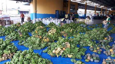 Aquisição de Alimentos distribui mais de 16 toneladas em Porto Velho