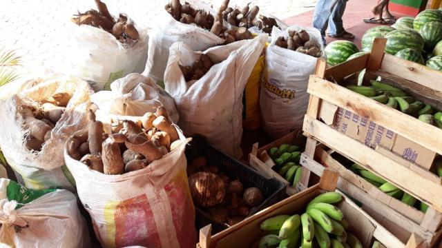 PAA distribuiu mais de 40 toneladas de alimentos em julho, na capital - Gente de Opinião