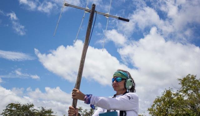 Levantamentos fazem parte de trabalho do Grupo de Pesquisa em Mamíferos Aquáticos Amazônicos, que monitora espécies nas reservas (Foto: Amanda Lelis) - Gente de Opinião