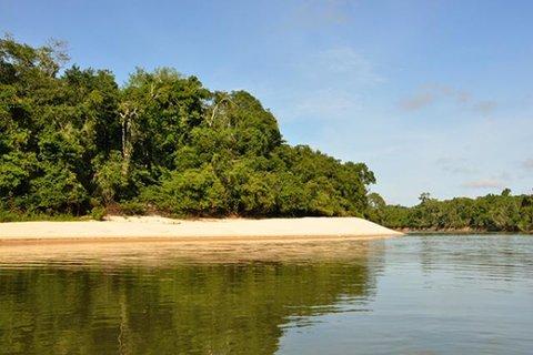 No Cone Sul, governo garante ações de monitoramento e preservação de espécies animais e vegetais do Parque Estadual de Corumbiara