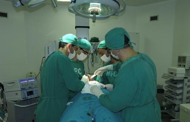 Até agora já contabilizam 90 transplantes de rins em todo o estado - Gente de Opinião