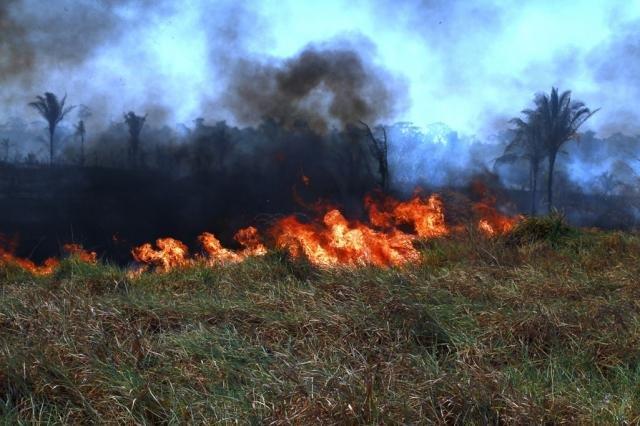 Equipes atuarão em áreas do Estado que apresentam maior incidência de focos de calor e incêndios - Gente de Opinião