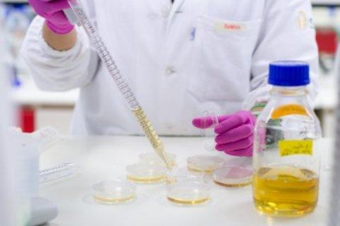 Malária - Nova molécula interrompe ciclo de vida do parasita no organismo humano