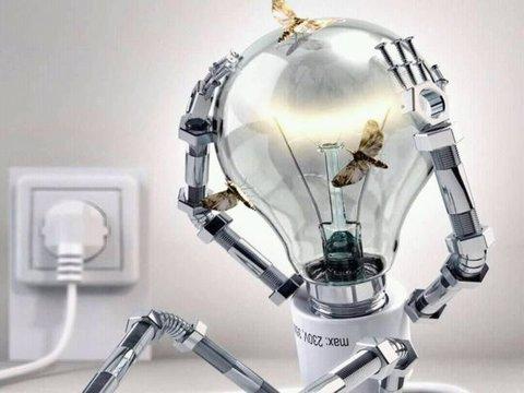 Energia Elétrica - Gatos: consumidor legal paga conta dupla