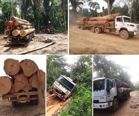 Desmatamento em área de reserva de Rondônia é denunciado pela União dos Proprietários de Imóveis Rurais do Setor Manoa, Gleba Rio Preto e Jaquirana