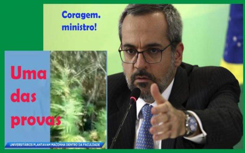 Weintraub, um ministro que desmente a esquerda e enquadra universidades que têm plantação de maconha + Bom dia, covarde e canalha