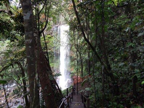 Turismo de Rondônia ganhou destaque no Brasil e no mundo em 2019