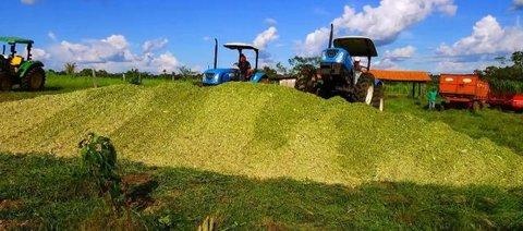 Prefeitura auxilia agricultores na produção da silagem de milho em Castanheiras